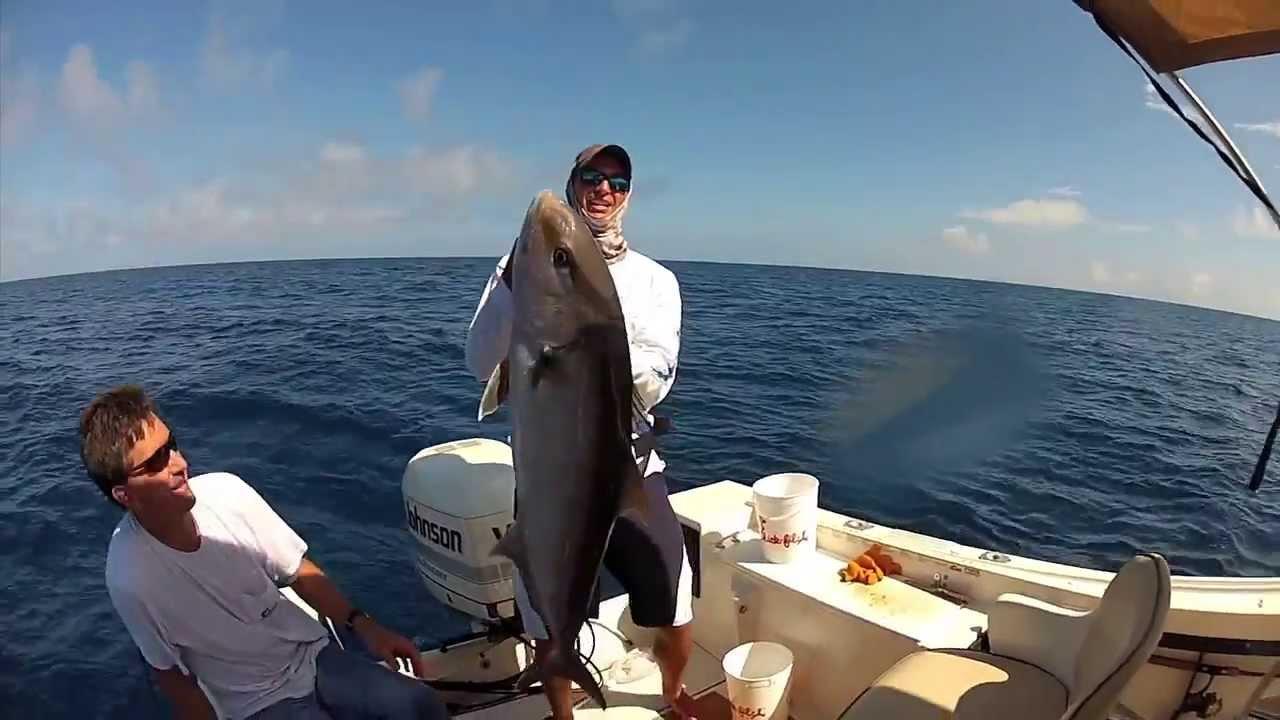 Offshore fishing in sarasota florida youtube for Florida fishing app