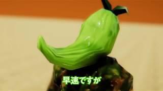 緑黄色野菜マン vol17 フェス