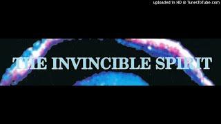 "The Invincible Spirit - ""Take As Normal"" - 1991 / 1992"