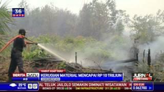 Kerugian Kebakaran Hutan di Riau Rp 10 Triliun