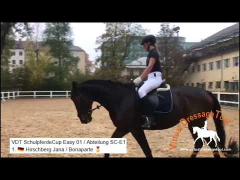 Virtual Dressage Tour
