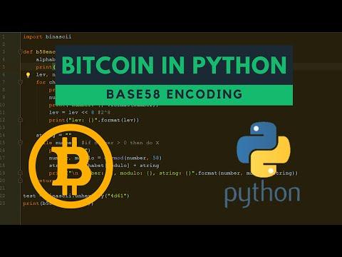 Base58 Encoding In Python (bitcoin)