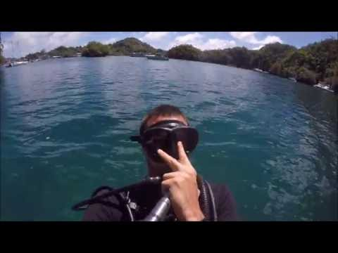Highlights from Palau Holiday