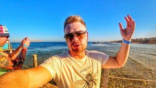 ЕГИПЕТ 2021 Шарм эль Шейх МОРЕ ЕСТЬ Rehana royal beach resort 5 Отдых в Египте