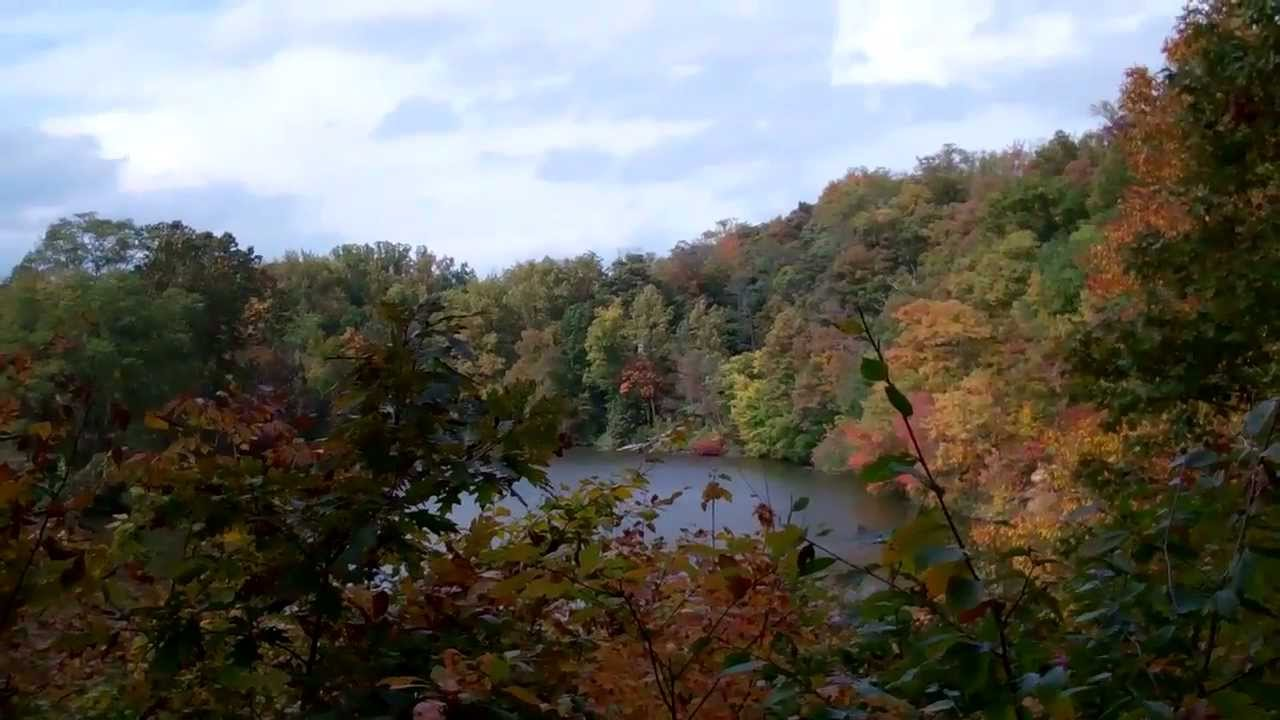 Scenery Leaves Changing Color At Lake Roland Baltimore