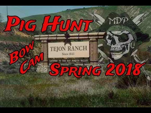 Bow Hunting Bow Camera Footage Pig Hunt Tejon Ranch Spring 2018