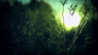 Ellie Goulding - Lights (Faraway Skies Bootleg Remix)