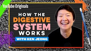 Your Guts, Explained by Ken Jeong | Celebrity Substitute