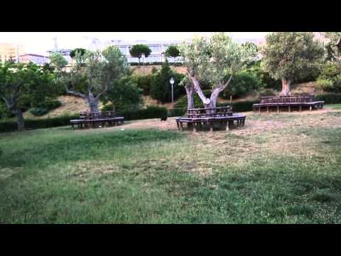 Video OnePlus One Slow Motion Full Hd 60 Fps   Giardiniblog