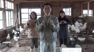 4月30日にAKB48公式化をした『恋するフォーチュンクッキー さぬき市Ver...