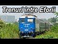 Trenuri sezoniere Eforie 2018-Summer trains at Black Sea-Bahnverkehr neben Techirghiol-See