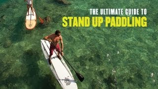 The Ultimate Guide to Stand Up Paddling trailer