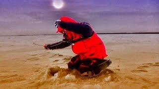 БЕЗМОТЫЛКА ЖГЁТ НА РЫБАЛКЕ! ЛЕСКИ ЗВЕНЯТ! Рыбалка на мормышку-козу в глухозимье