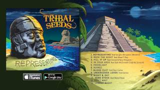 Watch Tribal Seeds Dont Wait video