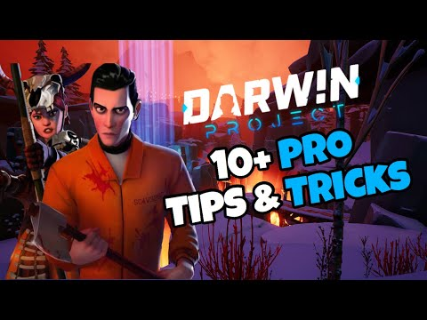 How To Become A God! Darwin Project: 10+ Tips & Tricks To Help Your Gameplay! (Xbox)