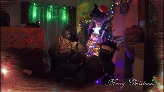 【Furry DigiKnight FF #16】聖誕快樂~變身! Merry Christmas! Watch me transform!