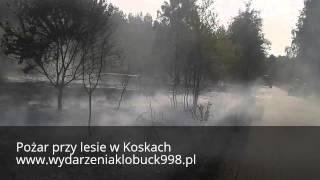 Pożar przy wysokim lesie Koski