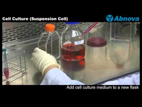 how to prepare edta solution for cell culture