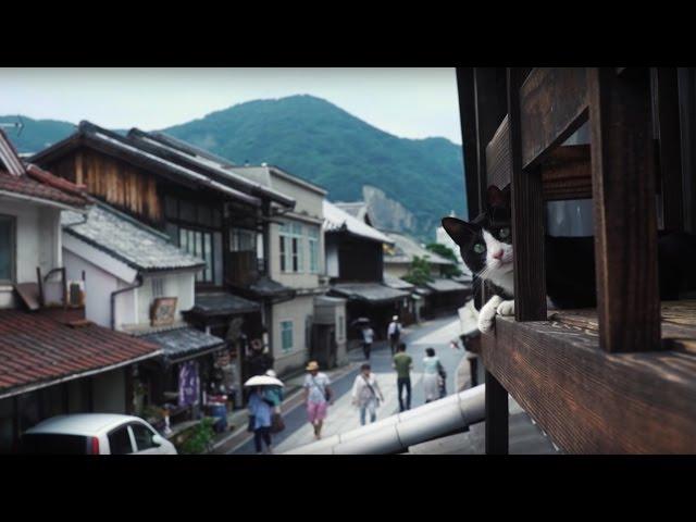 """広島 CAT STREET VIEW 第2弾 –竹原編– コンセプトムービー / Hiroshima Cat Street View 2 """"Takehara"""" – Concept Movie"""