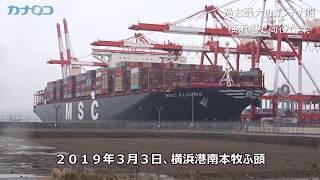 過去最大のコンテナ船、横浜港で荷役作業/神奈川新聞(カナロコ)