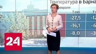 """Погода 24"": Алтай заметает снегом"