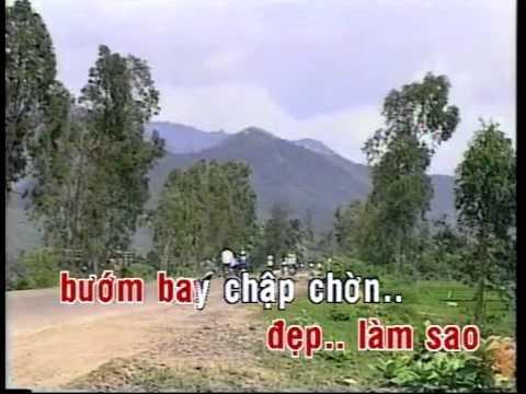 Dam Cuoi Tren Duong Que Huong Karaoke