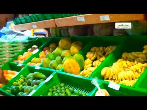Agribusiness Planning - Kenya Part I