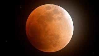 【ノーカット動画】東京上空の「スーパー・ブルー・ブラッドムーン」 皆既月食を観測 thumbnail