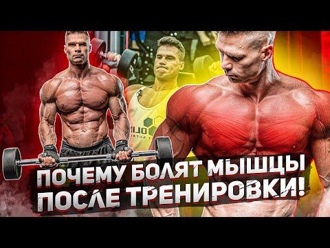 Мышцы после тренировки болят через день после тренировки