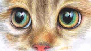 Как нарисовать глаза кота