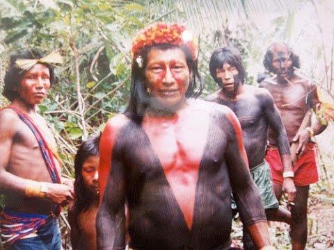 AMAZONIA ~ Paul Lawler & Paul Speer ~ Wonder CD