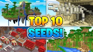 TOP 10 BEST SEEDS FOR MINECRAFT