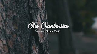 The Cranberries Never Grow old - Lyrics