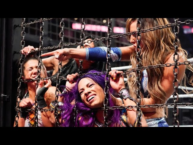 Ups And Downs For WWE Elimination Chamber 2019