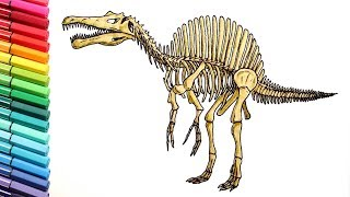 Coloring Pages for Kids to learn colors With  Dinosaurs - How to draw Spinosaurus Skeleton for Kids