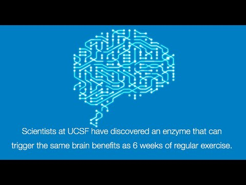 Can a pill provide the same cognitive benefits as exercise?
