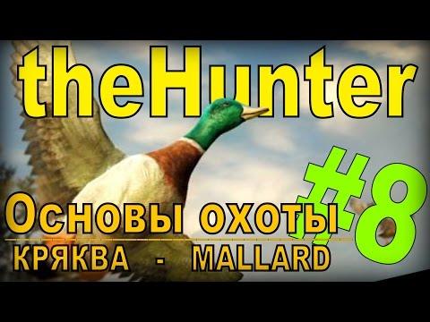 the Hunter - Кряква [Основы охоты] #8