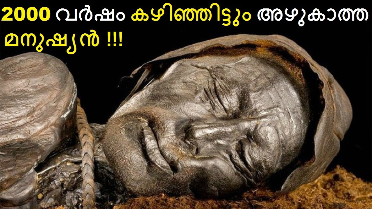 Science Behind The 2000 Year Old Body Which Doesn't Decompose    Bright Keralite