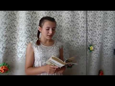 Изображение предпросмотра прочтения – ОксанаБухтоярова читает произведение «ШЕПОТ, РОБКОЕ ДЫХАНЬЕ» А.А.Фета