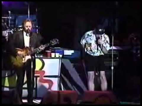 The Beach Boys - Add Some Music to Your Day (Live 1993)