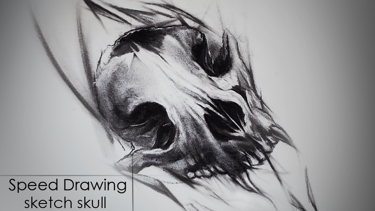 speed drawing charcoal sketch tattoo style skull animal youtube