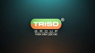 TRISO GROUP | Tổng kết cuối năm 2019