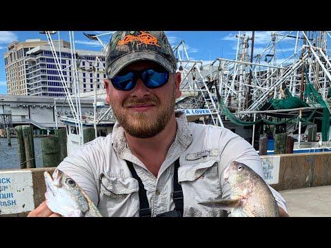 Fishing Behind The Hardrock Casino Biloxi MS