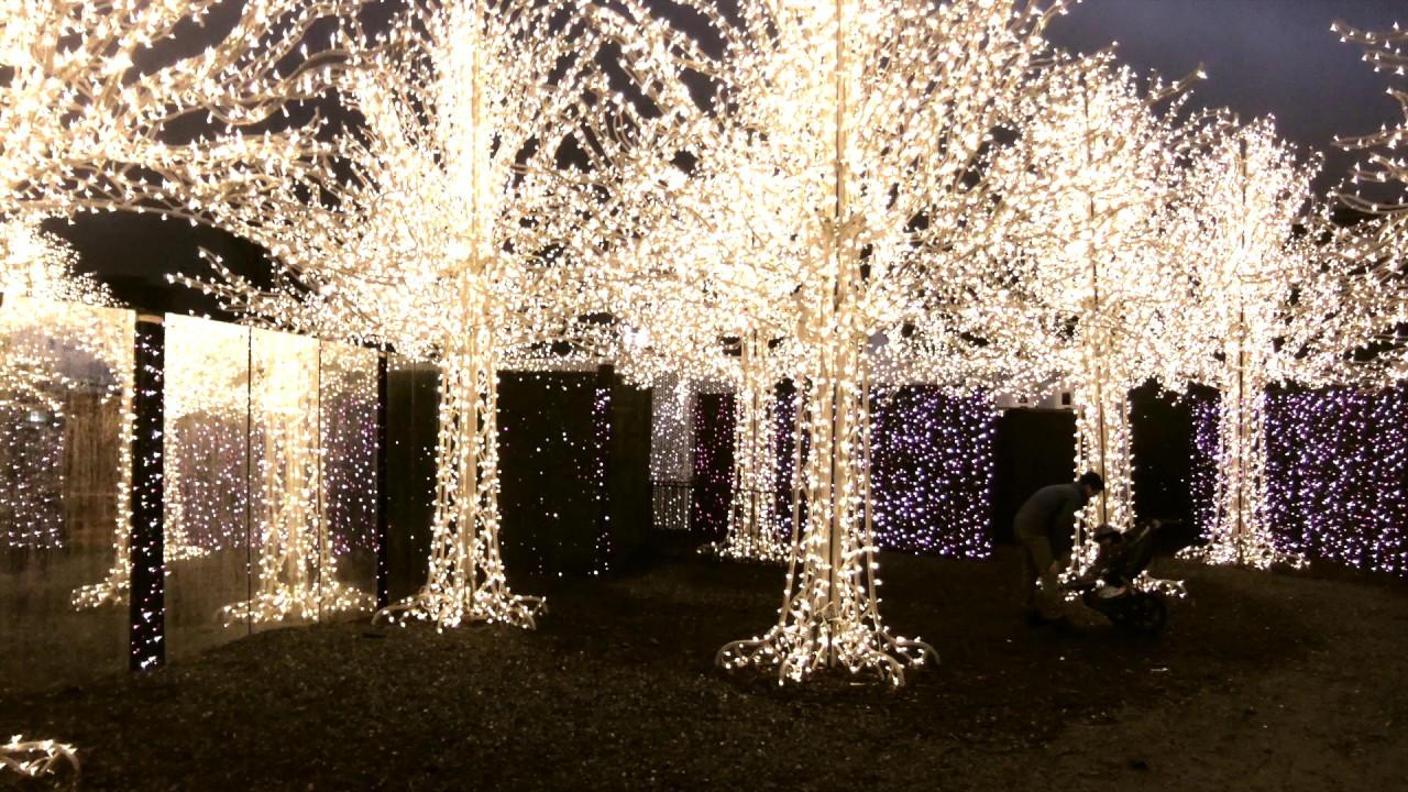 enchant light maze