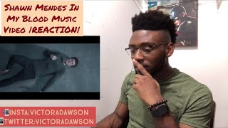 Shawn Mendes In my Blood Music Video |REACTION|