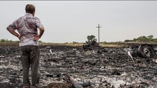 Downed Malaysia Airlines Flight MH17:  The Disaster in the Sky