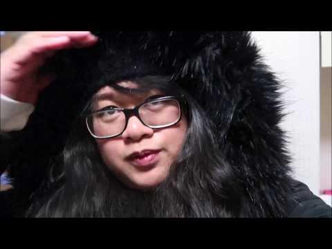 Vlog 17- Namdaemun souvenir shopping, Dog cafe and N Seoul Tower experience