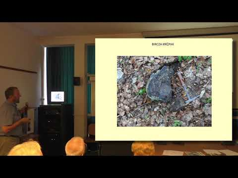 Flint in time and space - lecture 4 - Andrzej Pelisiak