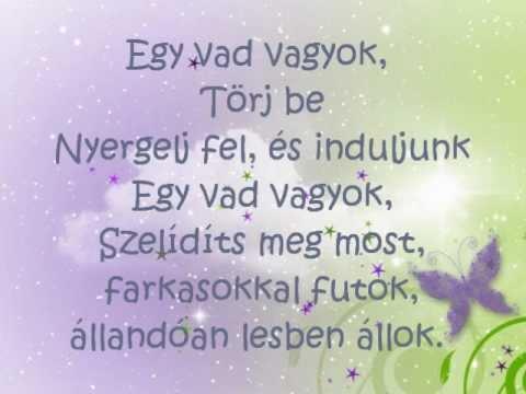Flo Rida ft. Sia - Wild Ones Magyar Magyarul Hungarian Lyrics