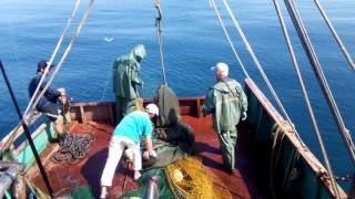 Рыбалка а Абхазии(, 2016-08-06T14:09:43.000Z)